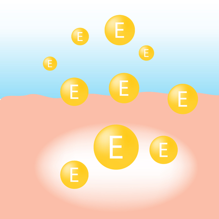 Vitamin E absorb on the human skin with white glow light absorption infographic vector Illustration