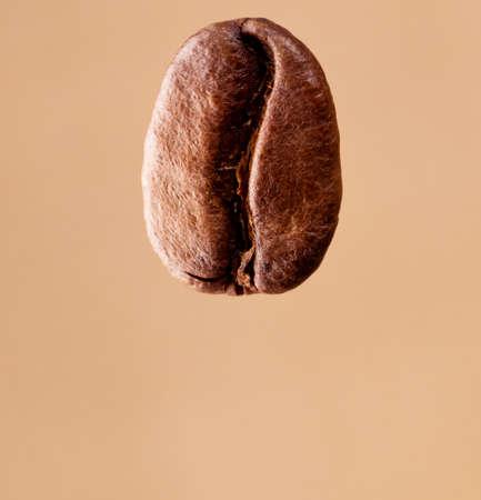 toasted: macro photo of a coffee bean toasted