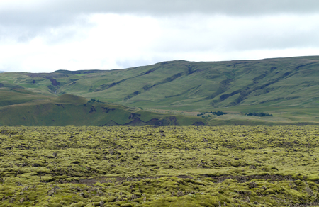 former river of solified lava covered by a layer of green moss in iceland with green hills on the background 免版税图像