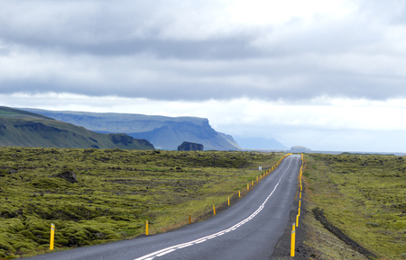 ring road route around iceland crossing an ancient lava river covered by moss with the cliffs and the sea in the background