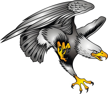 attacks: nice flying eagle on the white background