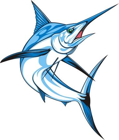 pez vela: natural de marlin azul en el fondo blanco