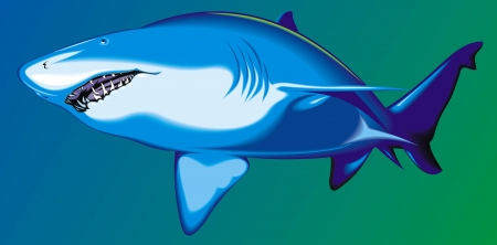 illustrated shark on the blue and green background Stock Vector - 18295052