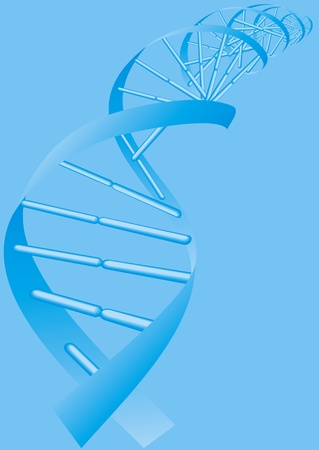 illustrated DNA spiral on the blue background Stock Vector - 18315624