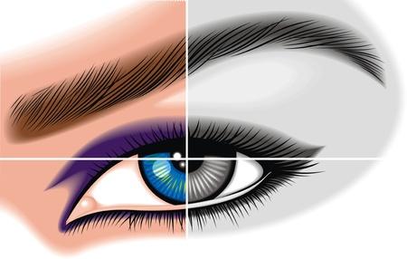 female eye illustrated in color and black   white Illustration