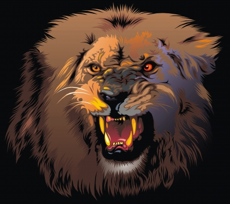 ferocious lion in the jungle on the black background Vector