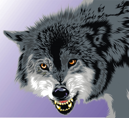 dog teeth: wolf with fangs on the gray background