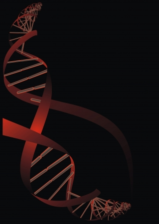 researchs: DNA red spiral on the black background
