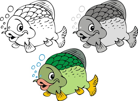 illustrated nice fish  in three color versions isolated on white background  Vector
