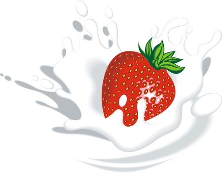 fresh strawberry in milk or yogurt isolated on the white background Vector