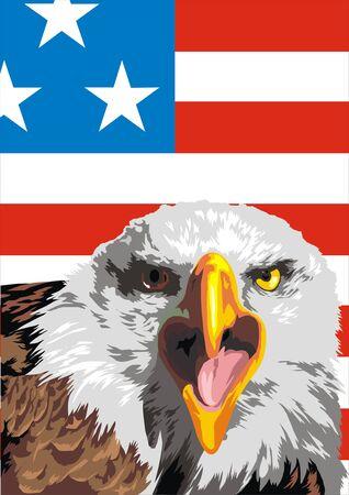 symol: eagle and flag as symbols of the USA