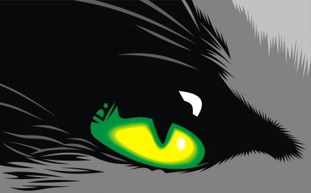 ojo de gato: ojo de gato amarillo y verde sobre el fondo negro