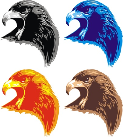 the air attack: head of eagle on the white background
