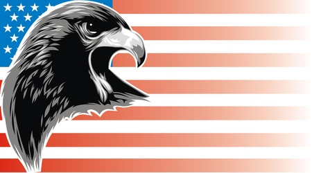 head eagle on the USA flag  background Vector