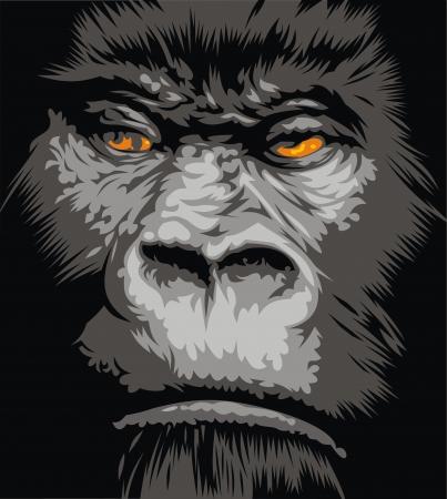 gorila: cara del gorila con los ojos de color naranja