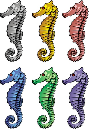 nise seahorse in the 6 different colors  Vector