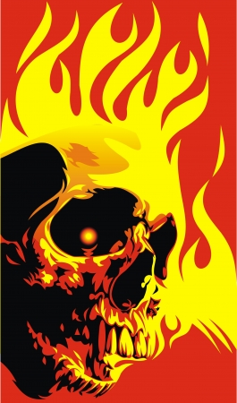 human skull in the red and yellow flames  Vector