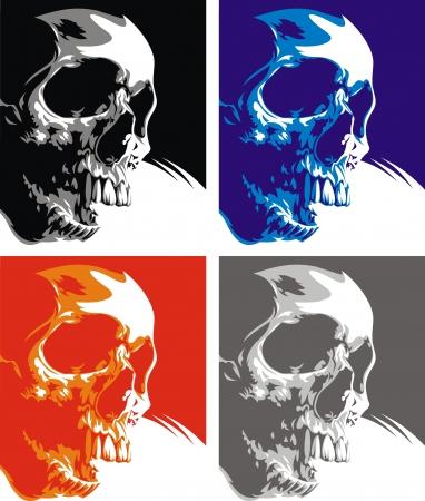 human skull Stock Vector - 20778083