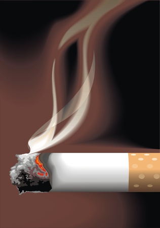 carcinogen: detail of cigarete and smoke  great vector art  Illustration