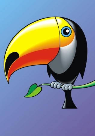 illustrated nice toucan on the blue background Vector