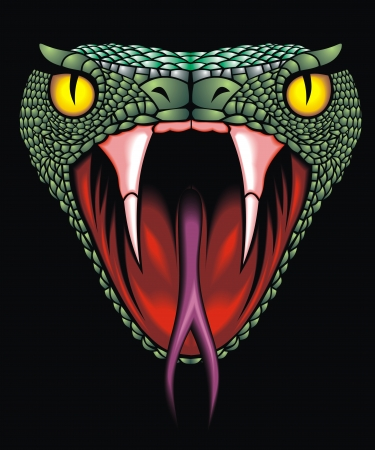 cobra: bella testa di serpente su sfondo nero Vettoriali