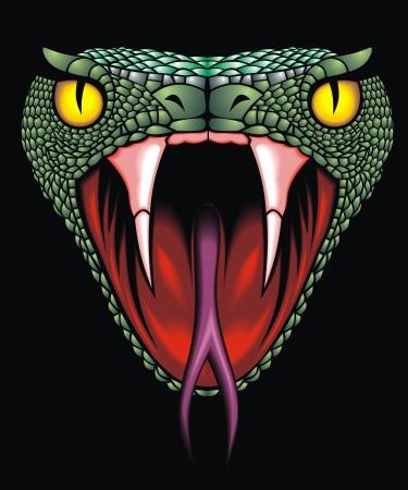 serpiente de cascabel: bonita cabeza de serpiente en el fondo negro Vectores