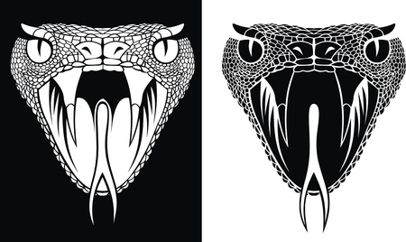 nice snake head in two versions as background Vector