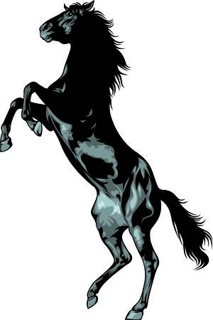 zwarte wild paard geïsoleerd op de witte achtergrond Stock Illustratie