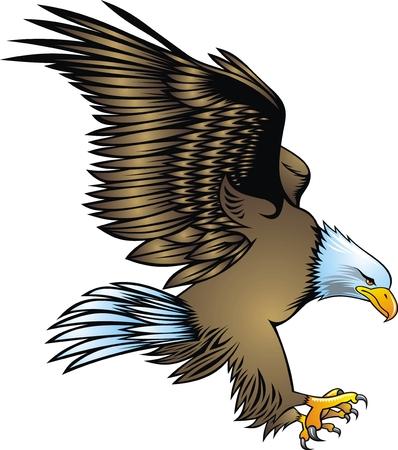 eagle tattoo: illustrated nice eagle isolated on white background Illustration