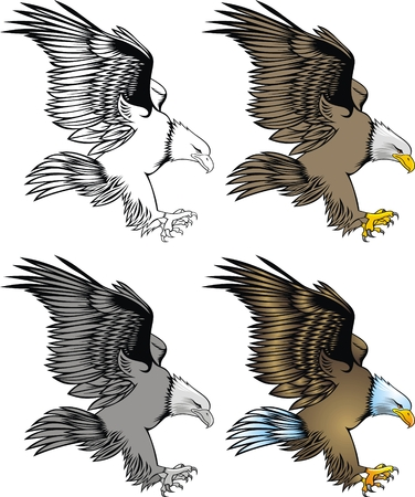 illustrated nice eagle isolated on white background Vector