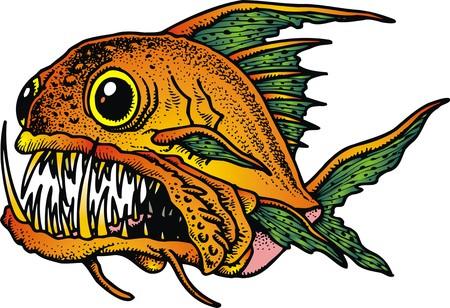 pygocentrus: piranha fish isolated on the white background Illustration