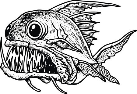 piranha: piranha fish isolated on the white background Illustration