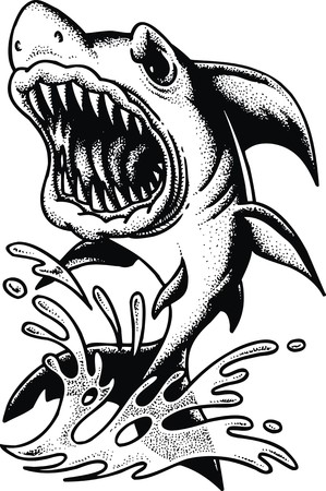 big shark isolated on the white background Vector