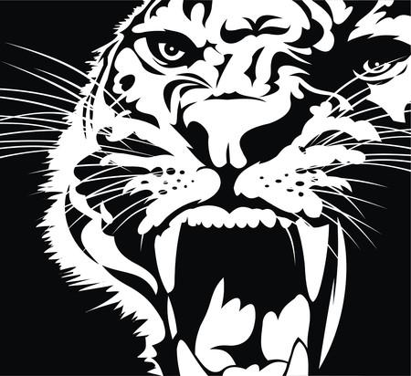 hoofd van de wilde kat geïsoleerd op zwarte achtergrond
