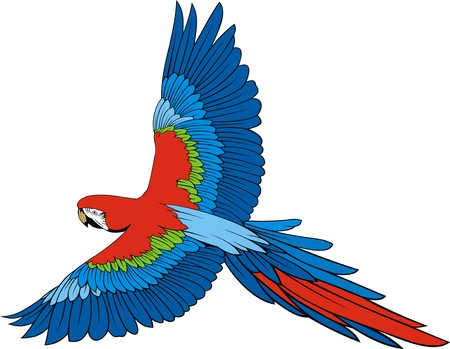 ara: parrot ara  isolated on the white background Illustration