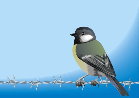 bird and barbed wire isolated on the blue background Ilustração