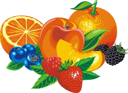 exotic fruits: exotic fruits isolated on the white background