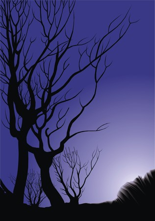 land development: old trees in the violet night as natural background