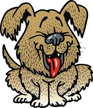 animal abuse: funny dog isolated on the white background
