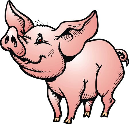 sow: small pig isolated on the white background Illustration