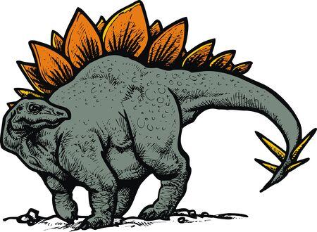 echse: stegosaurus dinosaur isolated on the white background