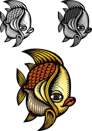 golden fish: small golden fish isolated on the white background Illustration