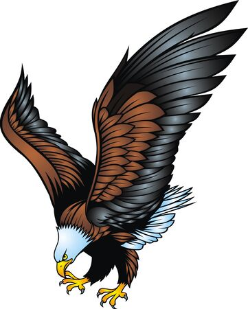 swooping: nice eagle isolated on the white background