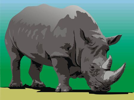 wild animal: old wild rhinoceros isolated on the green background Illustration