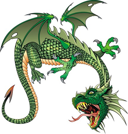 ferocious: chinese green dragon isolated on the white background