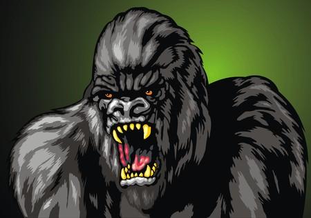 gorila: ugly gorila monkey isolated on the dark background