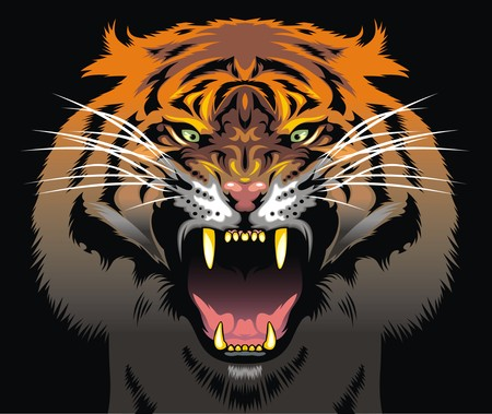 tigress: color tiger head as very nice animal background Illustration