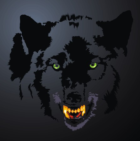 stylistic embellishments: face of wolf head in the dark night Illustration