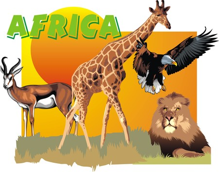 zoo as: africa animals as ZOO banner isolated on the white background Illustration