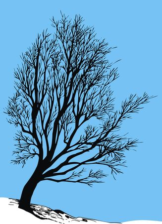 dry: dry tree with blue sky as background Illustration